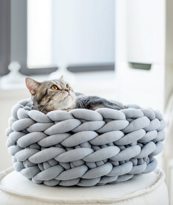 braid cat bed gray