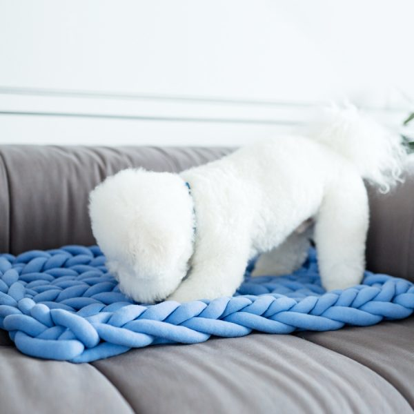 braid pet mat blue