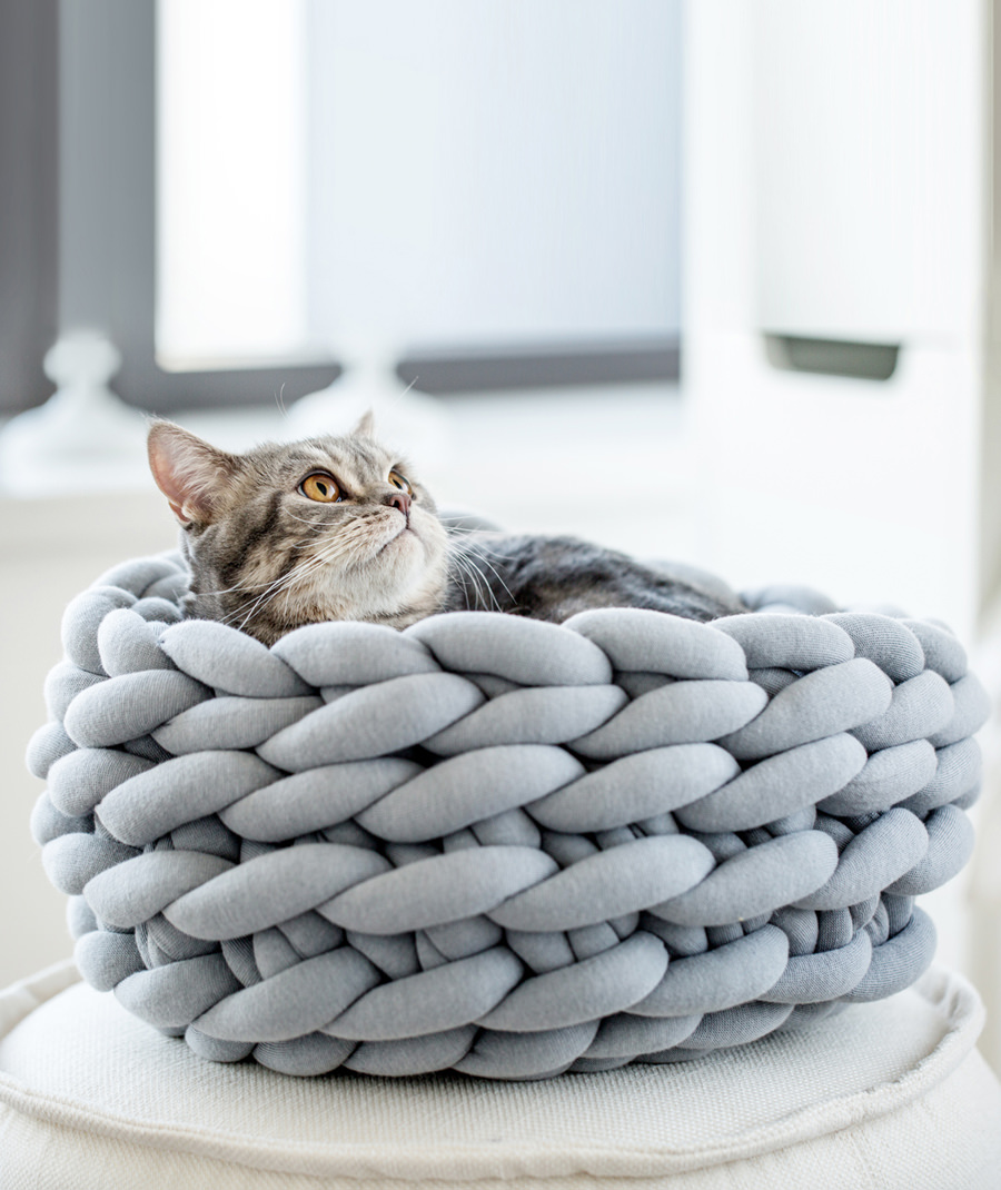 Ohhio Braid Cat Bed DIY Kit Gray
