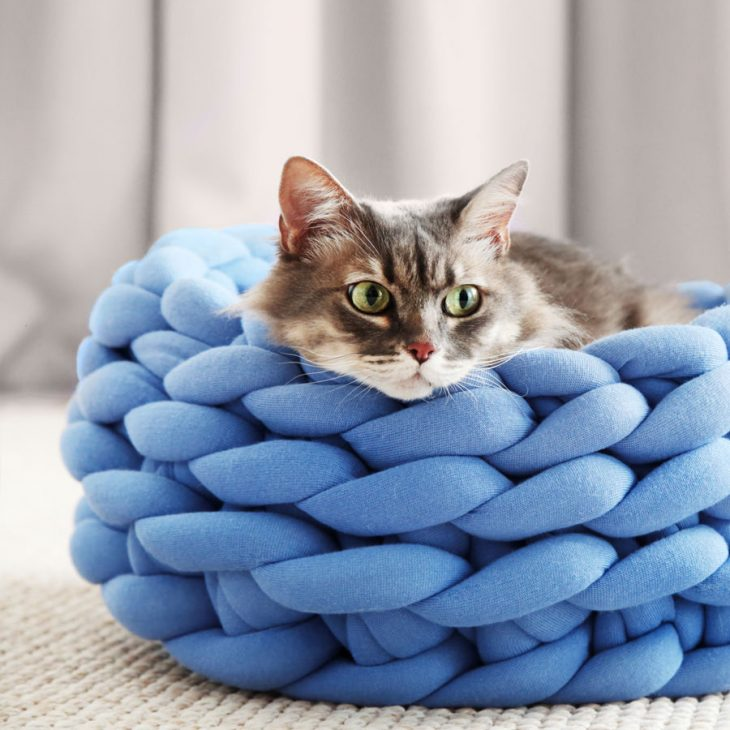 Ohhio Braid Cat Bed DIY Kit