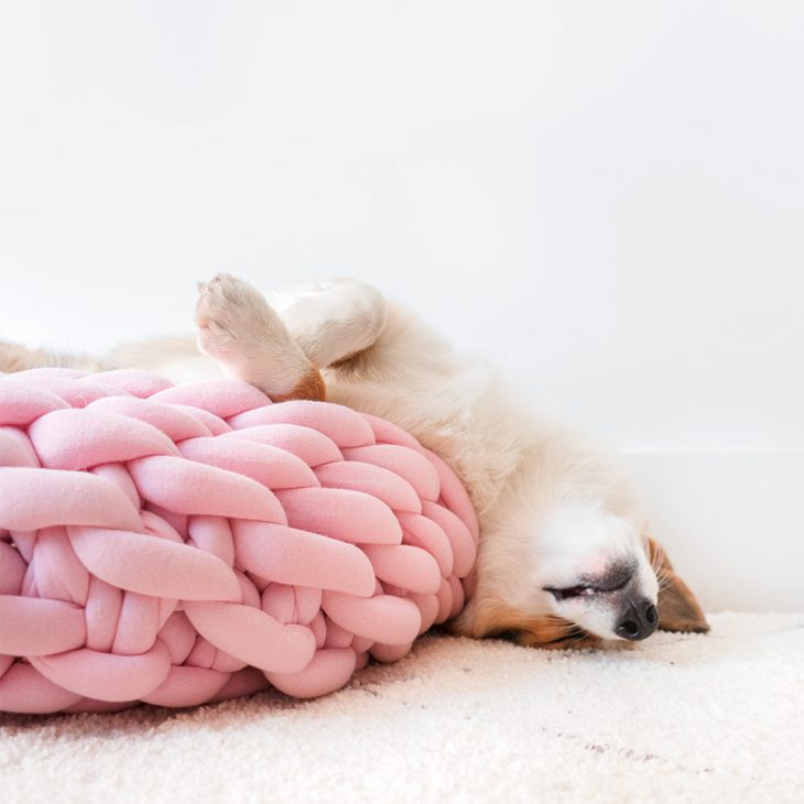Ohhio Braid Dog Bed Pink
